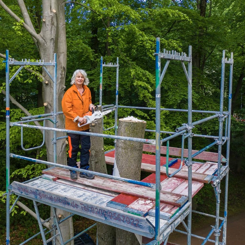 Kunst am Baum Sibylle Pieper